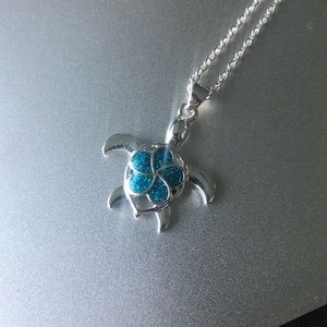 Jewelry - 925 Silver Turtle Necklace